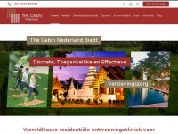 thecabinnetherlands.nl