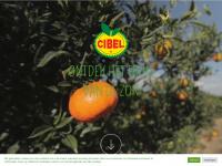 cibel.be