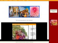 corsogroep2002.nl