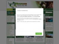spottingwildlife.com