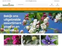 Kwekerijonline.nl - Online planten kopen was nooit zo makkelijk! - Kwekerij Online