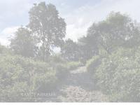 nancyarkema.nl