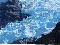 coell.nl