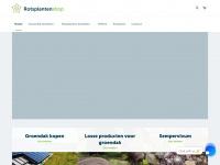 rotsplantenshop.nl