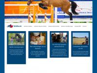 seldsum.nl