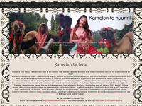 Kamelen te huur, kameel, dromedaris, slang of ezel, paard huren, verhuur
