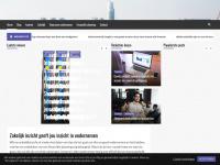 zakelijkinzicht.nl