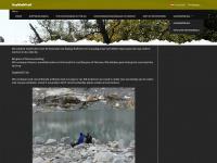 outdoordogwalkshop.com