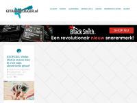 Blog pagina - Gitaarblogger.nl