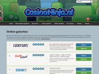 Casinoninja.nl - Casino ninja vind voor jou de beste goksites