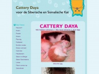 dayacattery.nl