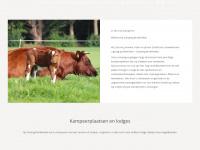 camping-braakhekke.nl