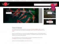 koicentrumsteenwijk.nl