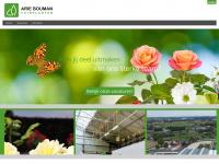 werkenbijariebouman.nl