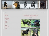 Debeauceron.nl - This domain name has been registered with DomRaider.com