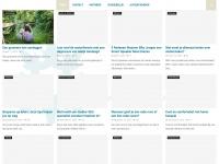web-index.nl