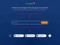 Website-in-ontwikkeling.nl
