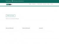 steeghsschilderwerken.nl