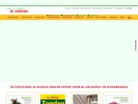deoosteinde.nl