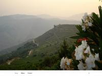 Douroprime.nl - Douro Prime – Portugese kwaliteitswijnen