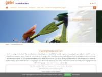 duizeligheidscentrum.nl