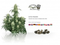 Dutch-passion.nl - Dutch Passion - Cannabis seeds - Buy safe from Dutch Passion