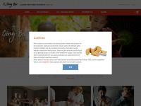 Academie Qing-Bai | Chinese Geneeskunde op niveau!