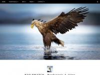 eaglewatch.nl