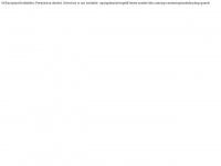 geld-lenen-zonder-bkr.com