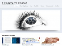 ecommerceconsult.nl