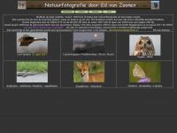 Edvanzoonen.nl - Natuurfotografie door Ed van Zoonen