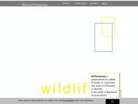 Erwinkessing.nl - welcome - EKPhotography