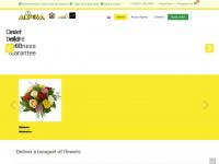 alpin.nl