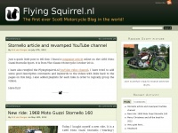Flyingsquirrel.nl - This domain name has been registered with DomRaider.com