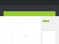 fysiotherapie-sellingen.nl