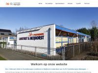 fysiotherapielankforst.nl
