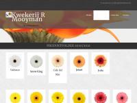 gerbera.nl