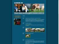 gijmink.nl