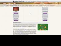 Online de leukste gokkasten spelen op gokkasten-net.nl