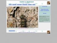 goyatlah.nl