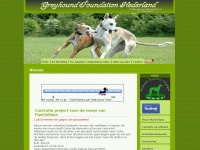 greyhoundfoundation.nl