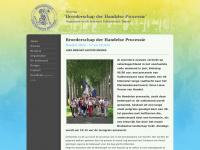 handelseprocessie.nl