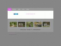handsomefriends.nl