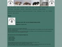 Hangoorfokkersclub.nl - Home