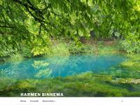 harmenbinnema.nl