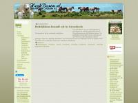 henkbaron.nl