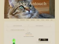 antouch.nl