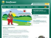 emsflower.nl