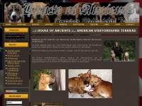 Houseofancients.nl -  House of Ancients Home House of Ancients American Staffordshire Terriers