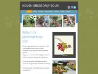 hoveniersbedrijfsour.nl